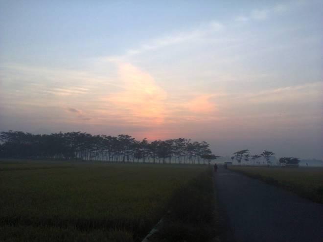 Photo0679
